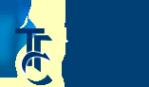 Логотип компании Тепловые Газовые Системы
