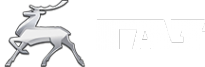 Логотип компании ГРУЗАВТОИМПОРТ