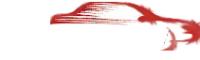 Логотип компании Пальмира