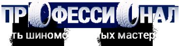 Логотип компании ПРОФЕССИОНАЛ