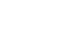 Логотип компании Новолетие