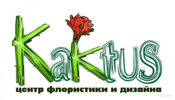 Логотип компании Kaktus