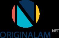 Логотип компании ИНКСИСТЕМ