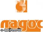 Логотип компании Ладос